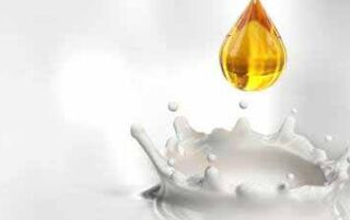 Молоко з медом — користь і шкода з корицею або маслом при застуді, кашлі і для схуднення